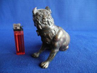 alte Bronze Hund Dogge Bulldogge Presa Canario Molosser um 1900 / 1920