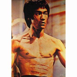 Bruce Lee Poster, Die Legende, Kung Fu Master, NEU