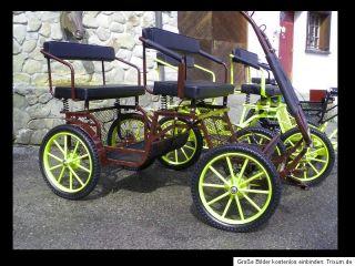 Kutsche Minishetty Mini Shetty Ponykutsche 70 kg!! Ponyschlitten