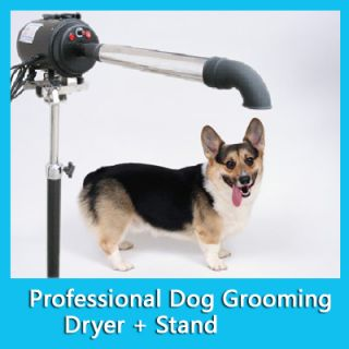 2800W TOP Hundefön & Hunde–Flüsterfön/Pet DOG Dryer