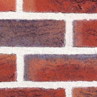 Handform Verblender Klinker Fassade 1580 rot bunt/blau bunt nuanciert