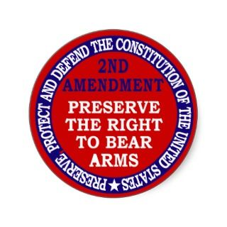 Against Gun Control Essay