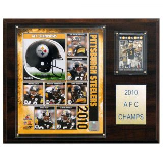 Pittsburgh Steelers 2010 AFC Champion Plaque