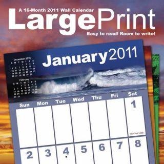 Large Print 2011 Wall Calendar