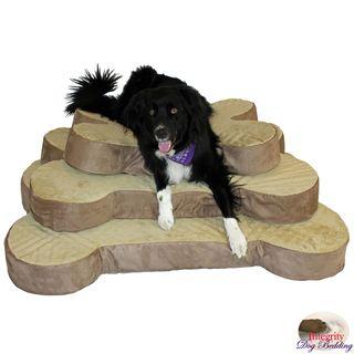 Integrity Bedding 5 inch Bone Shaped Foam Dog Bed