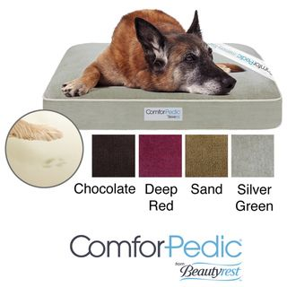 Simmons Comforpedic Deluxe Orthopedic Pet Bed (35 inches x 44 inches