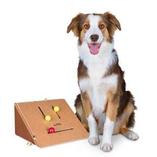 Kicker Treat Dog Trainer