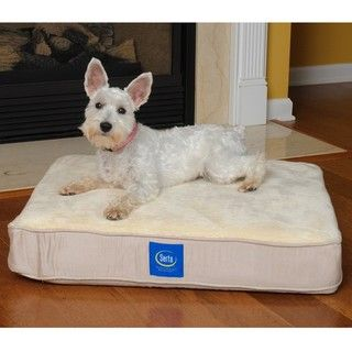 Serta Medium sized True Response White Polyester Memory Foam Pet Bed