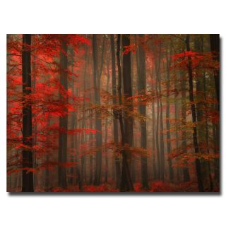 Philippe Sainte Laudy Enchanting Red Canvas Art