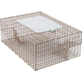 Live Animal Cage Trap   Sparrow Trap, Model# 161 0 004