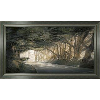 William Vanscoy Inside A Dream Framed Canvas Art