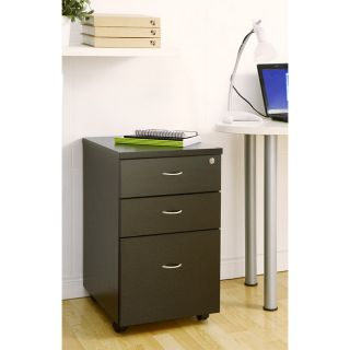 Enitial Lab Basis 2 drawer Rolling File Cabinet Today $159.99 5.0 (1