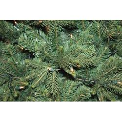Good Tidings Pacific Pine 7 ft Artificial Prelit Christmas Tree
