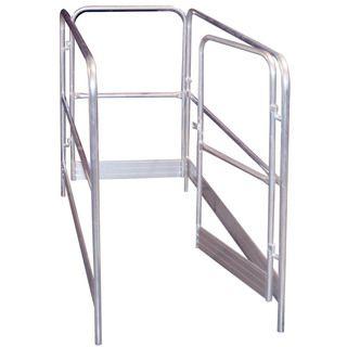 Aluminium Guard Rail Step Ladder