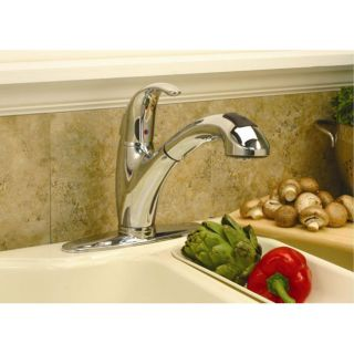 DeNovo Premier European style Pullout Chrome Kitchen Faucet