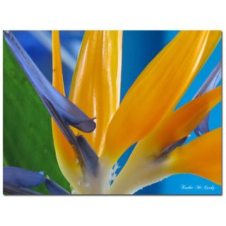 Kathie McCurdy Bird of Paradise Canvas Art