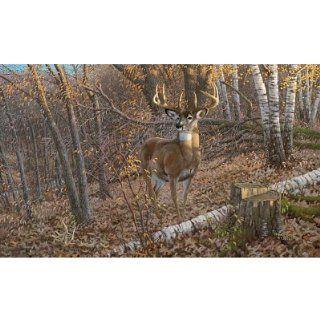 (99x164) Great Eight Big Buck Deer Huge Wall Mural Art
