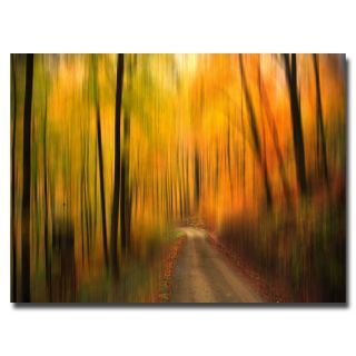 Philippe Sainte Laudy Welcome to My Fall Canvas Art