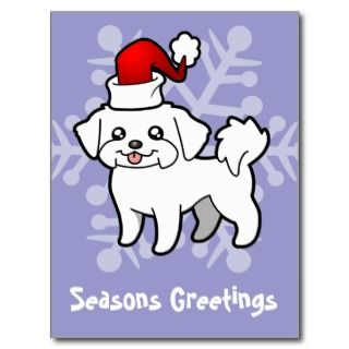 Christmas Maltese (puppy cut) postcards by SugarVsSpice