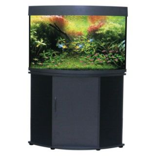 Compass Rose 50 Gallon Corner Aquarium & Stand II   Fish Tank